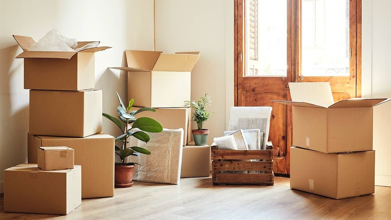 A Senior Move Manager's Personal Lessons in Downsizing image